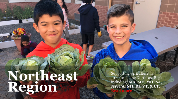 NJ Agricultural Society Learning Through Gardening Program - Boys with Cabbage
